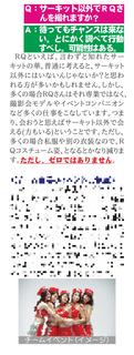 RQ解説カラー-011R-mosaic.png